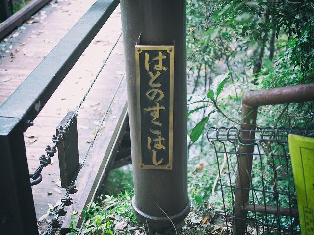 f:id:ikashiya:20171115000333j:plain
