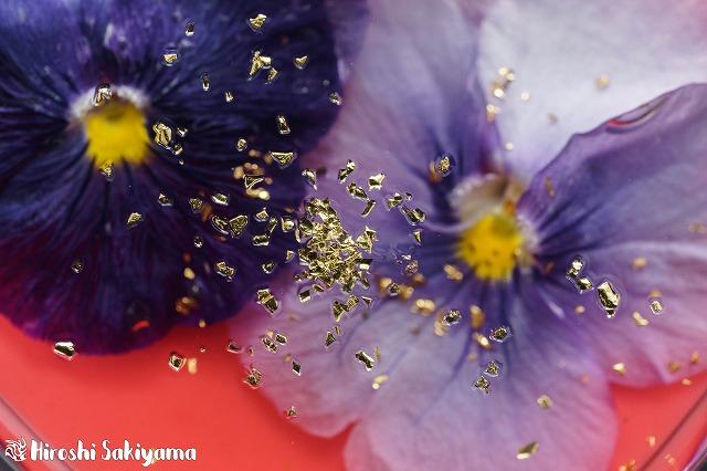 花のババロア4