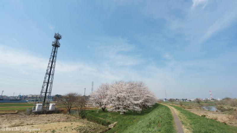 f:id:ikashiya:20180327101746j:plain