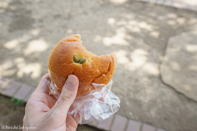 夏みかんのクリームパン