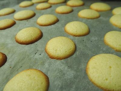 ラングドシャクッキー焼き上がり