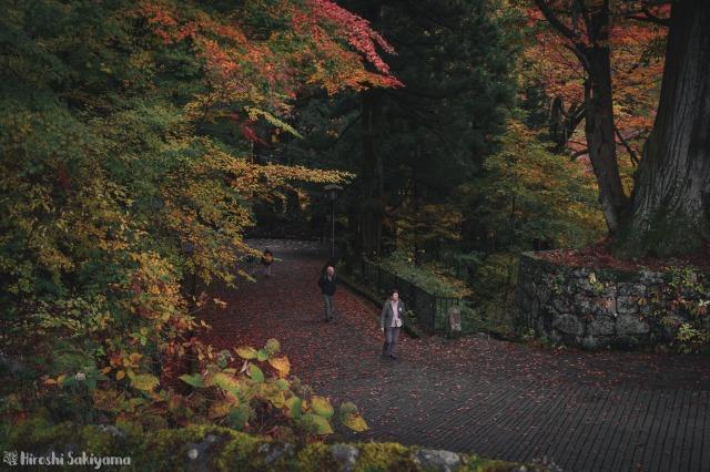 f:id:ikashiya:20181112235253j:plain