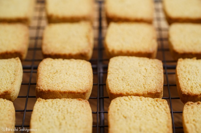 おからパウダーで作るプレーンなおからクッキーを横から見た様子
