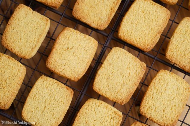 おからパウダーで作るプレーンなおからクッキーを上から見た様子