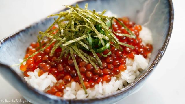 生筋子から作るいくらの醤油漬けで作ったイクラ丼のアップ