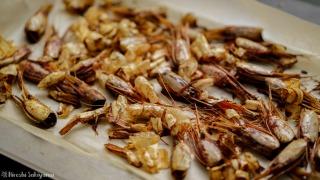 甘海老の殻を焼く