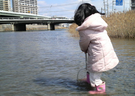 f:id:ikasumi:20090301221911j:image