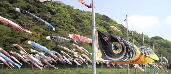 f:id:ikasumi:20090417160210j:image