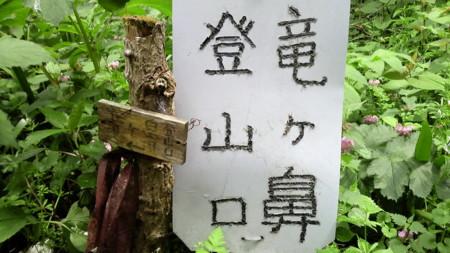 f:id:ikasumi:20090429020650j:image