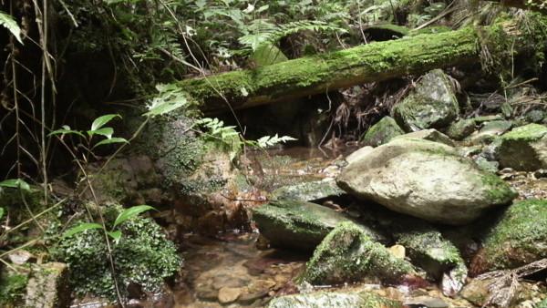 f:id:ikasumi:20090626001321j:image