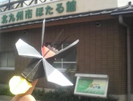 f:id:ikasumi:20091010173308j:image