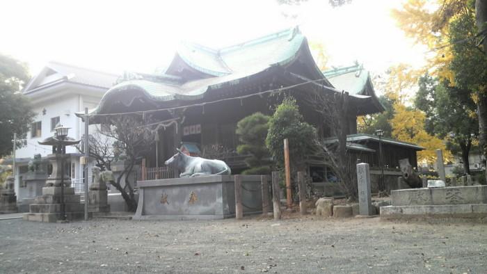 f:id:ikasumi:20091202214229j:image:h190