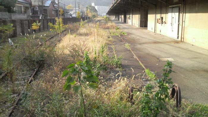 f:id:ikasumi:20091203205304j:image:h190