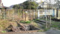 [田野浦海岸][貨物線][廃線][門司区][北九州]2009.12.03
