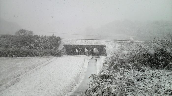 f:id:ikasumi:20100125234540j:image:h300