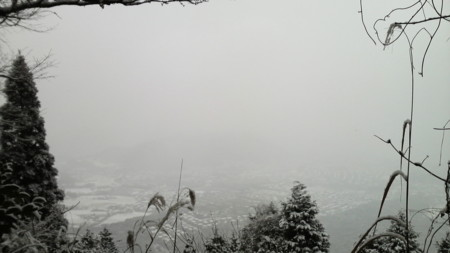f:id:ikasumi:20100226164112j:image