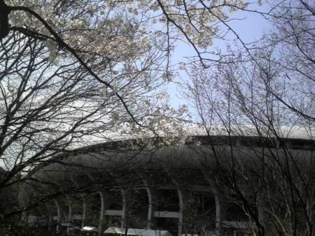 f:id:ikasumi:20100329143232j:image:h250