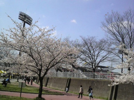 f:id:ikasumi:20100405172428j:image