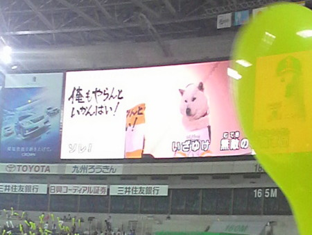 f:id:ikasumi:20100414000857j:image