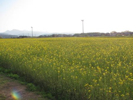f:id:ikasumi:20100426234240j:image
