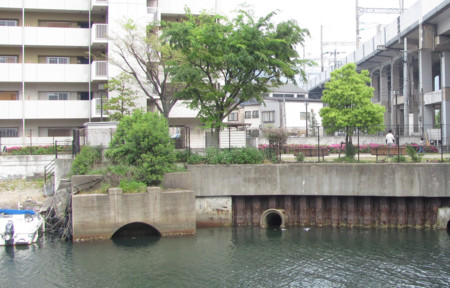 f:id:ikasumi:20100505175757j:image