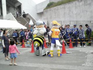 f:id:ikasumi:20100522190942j:image
