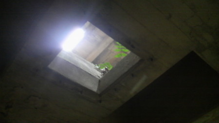 f:id:ikasumi:20100817183345j:image