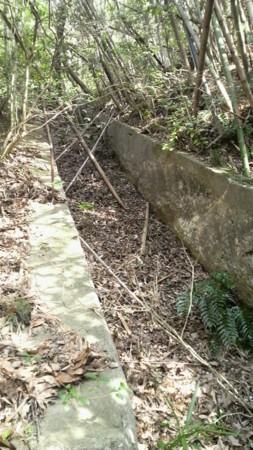 f:id:ikasumi:20100817184707j:image:h350