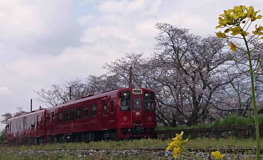 f:id:ikasumi:20190403054926j:plain