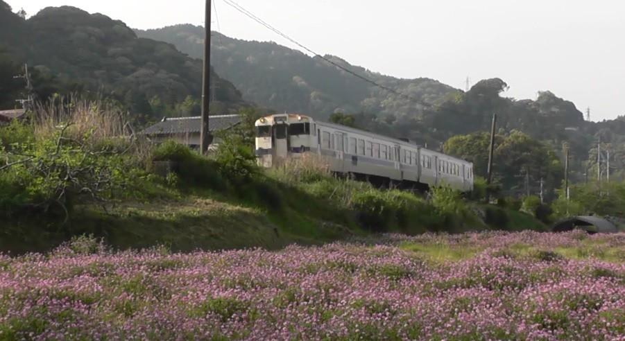 f:id:ikasumi:20190423012405j:plain
