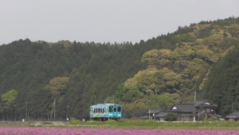 f:id:ikasumi:20190424224624j:plain