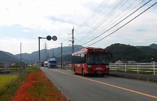f:id:ikasumi:20191008063214j:plain