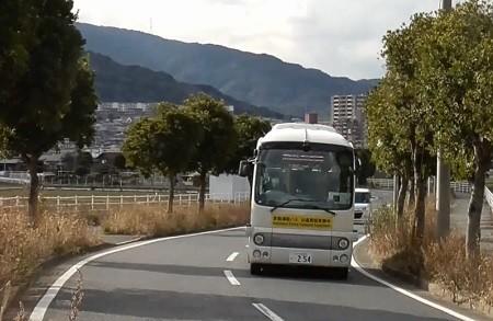 f:id:ikasumi:20200206230259j:plain