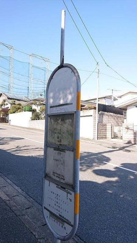 f:id:ikasumi:20200215000043j:plain