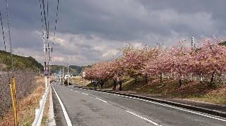 f:id:ikasumi:20200312103949j:plain