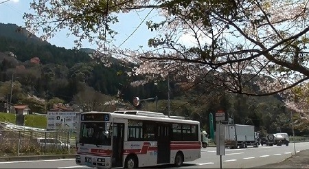 f:id:ikasumi:20200407154559j:plain