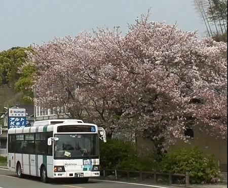 f:id:ikasumi:20200409015311j:plain