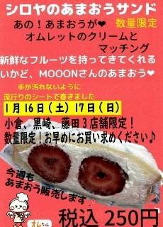 f:id:ikasumi:20210113211930j:plain
