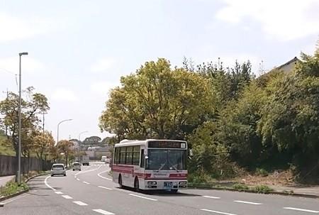 f:id:ikasumi:20210327223450j:plain