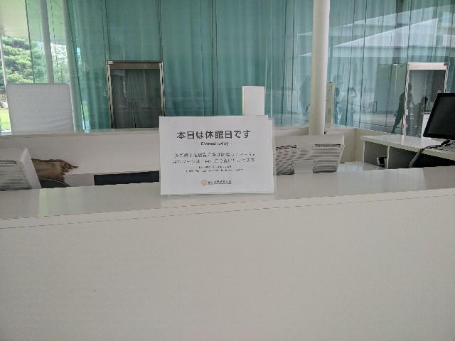 f:id:ikasumitan:20180828192042j:image