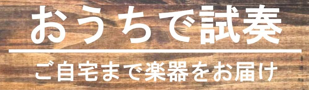 f:id:ikegaku:20210430211852j:plain