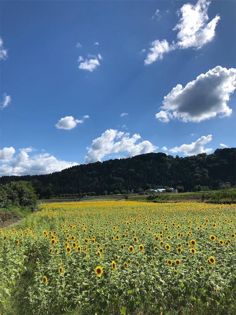 f:id:ikemotomasaru:20180724055632j:image