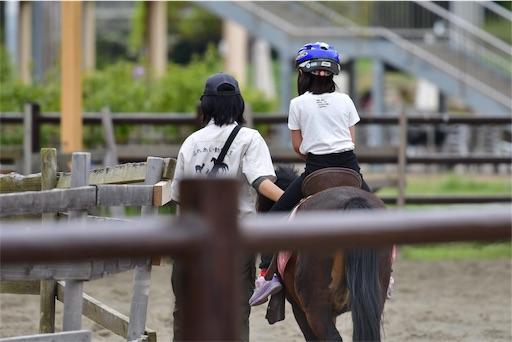 f:id:ikenagayoshie:20190502052815j:image