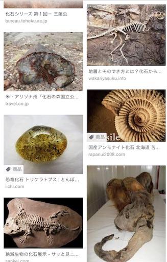 f:id:ikenagayoshie:20190619133230j:image