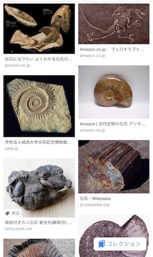 f:id:ikenagayoshie:20190619133232j:image