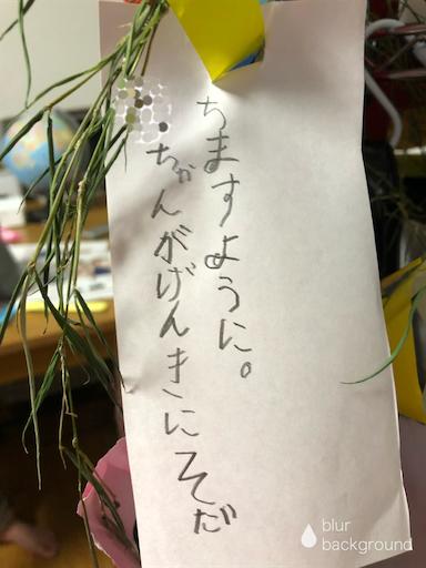 f:id:ikenagayoshie:20190623073552p:image