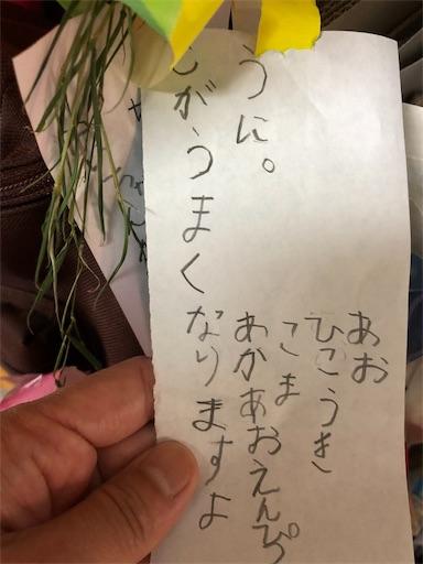 f:id:ikenagayoshie:20190623074701j:image