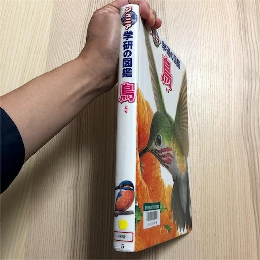 f:id:ikenagayoshie:20190627092303j:image