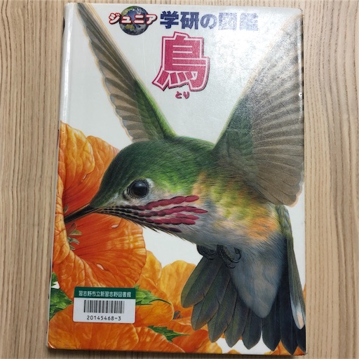 f:id:ikenagayoshie:20190627092317j:image