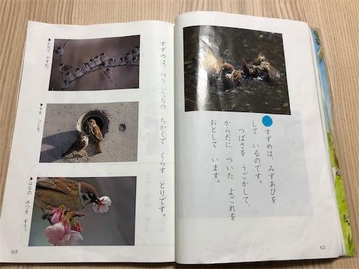 f:id:ikenagayoshie:20190627092321j:image